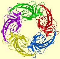 Células geohumanas, poder popular y colectivización de la agricultura / Ronald Balza G.